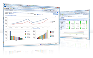 PerformancePoint dashboard screens